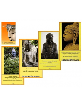Pack: Decouvrez Bouddha